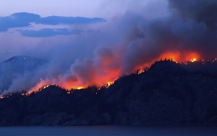 Wildfire_sm